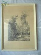 """Rézkarc  Dudás Jenő  """"Tölgy""""  erdő,  52,5x38,5cm."""