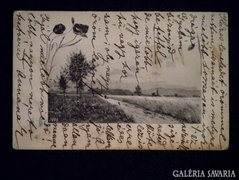 A020 Antik képeslap tájkép - 1905