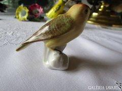 Kézzel festett pacsirta madár porcelán AQUINCUM