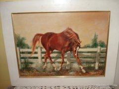 Ujhelyi Jenő: Barna ló olaj festmény