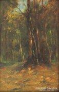Magyar festő 1930 körül : Erdőbelső