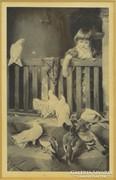 0F484 William Woodhouse (1857-1939) régi kép