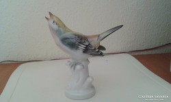Volkstedter porcelán madár - 13 cm