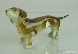 0K114 Royal Dux porcelán tacskó kutya
