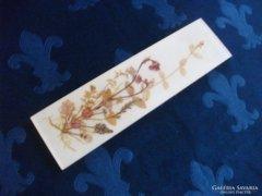 Mezei virágok üvegbe foglalva fali dísz-30 x 3 x 1 cm