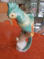 Kánikula Ár!Sürgősen eladó!  Herendi papagáj! 1. osztáj