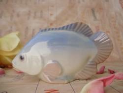 Nagyon ritka Royal Dux hal