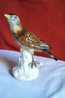 Gyönyörű Volkstedt madárka 17 cm x 19 cm