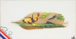 0O284 Jelzett Costa Ricai madártoll festmény