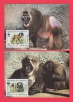 Carte Maximum - WWF Kamerun - 1988 (283)