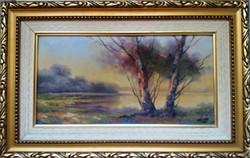 Czinege Zsolt : Tópart gyönyörű festménye.KARÁCSONYI AJÁNDÉK ÁRON!!!