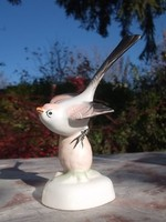 Fecske -vagy más madár Aquincum porcelán figura