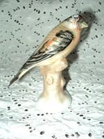 Gyönyörű szép porcelán fenyőmadár