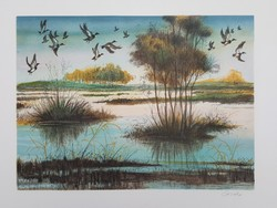 Francia művész: Vízparti táj vadkacsákkal