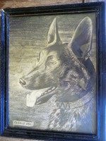 Kifinomult vonásokkal rajzolt kutya fej Asztalos Sándor 1935