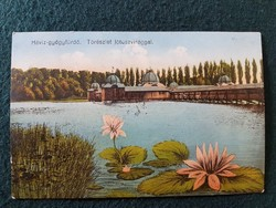 Hévízi Gyógyfürdő régi képeslap, Tórészlet lótuszvirággal
