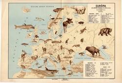 Európa állatföldrajzi térkép 1928, magyar nyelvű, 28 x 40 cm, madár, hal, gerinces, állat