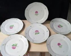 Herendi 6 db őszirózsás lapos tányér