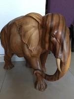 Elefánt Baliról