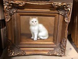 Kicsi olaj vászon macska