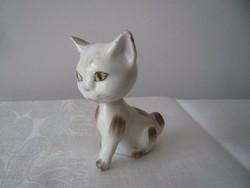 Aquincumi bólogató cica