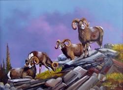 Muflon csapat 30x40cm olaj-vászon festmény