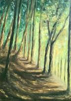 Erdei ösvény // Forest path
