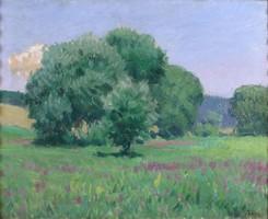 Telek Antal : Zöldelő fák a réten