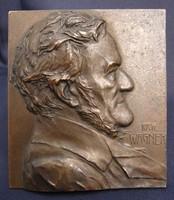 Bronz plakett érem - Richard Wagner - Franz Stiasny jelzett alkotása, aljában egyedi gravírozással!
