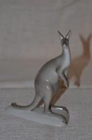 Kenguru figura