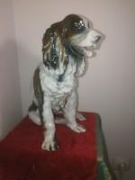 Porcelán kutya, hatalmas