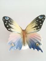 Nagyméretű Volkstedt lepke,pillangó