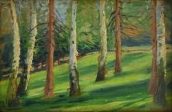 0W169 Ismeretlen festő : Erdőbelső