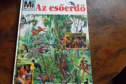 Mi-micsoda-az esőerdő