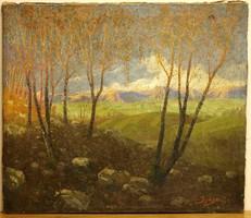 Ijjász Gyula (1874 - 1943)- kárpátaljai festőművész -Tájkép,