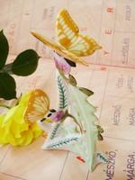 Lepke pár,pillangók gyönyörű szinekkel