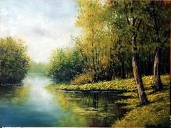 Károlyi Katalin - Tükröződés ( 40 x 30 , olaj, pácolt fakeretben )