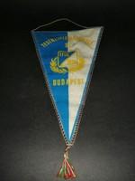 TFSE 1925 emlékzászló - EP