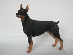 Dobermann kutya