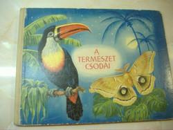 A TERMÉSZET  CSODÁI  Képeskönyv  Írta és rajzolta: Rudolf Engel Hardt  Fordította: György Ferenc