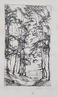 Szőnyi István 27 x 16 cm rézkarc