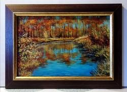 Simon Zoltán - Őszi vízpart ( 20 x 30, olaj, gyönyörű keretben )