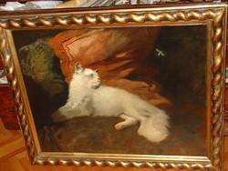 Heyer Artúr (thuringia 1872- bp. 1931): Angora kitten cat with bee