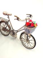 Fantasztikus ezüst kerékpár