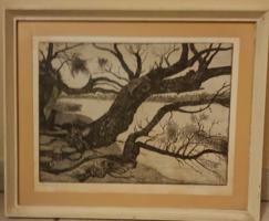 Nyári Lóránt: Papszigeti fák