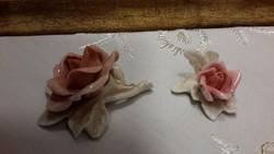 Ens virágok