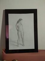 Ceruzarajz, női akt, kvalitásos kép papír alapon üvegezett keretben
