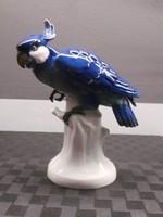 Porcelán papagáj