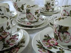 Antik gyémánt jelzés, BRIAR George Jones & Sons angol teás készlet és tál,csésze kistányérok,1881