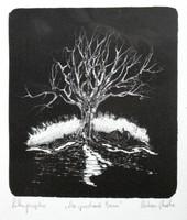 Olvashatatlan jelz. (20.sz.második fele) - A beszélő fa